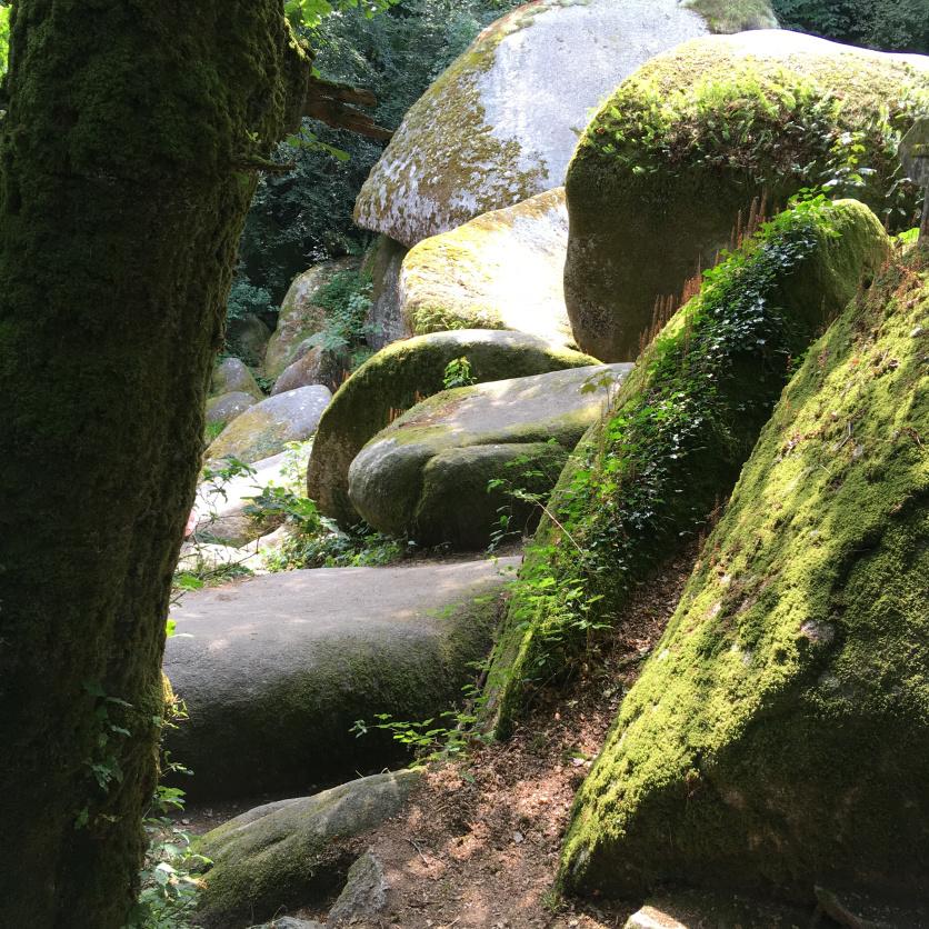 Huelgoat Wald Bretagne Frankreich
