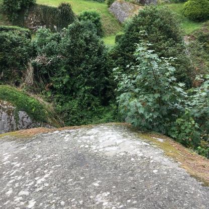 mystischer Wald Huelgoat Bretagne Frankreich
