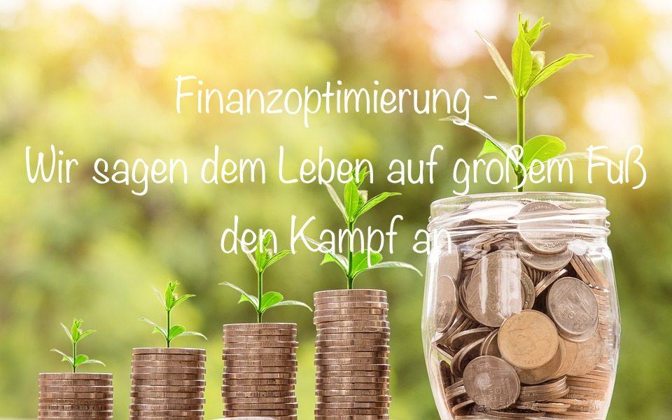 Finanzoptimierung Sparen Frugalismus Nachhaltigkeit