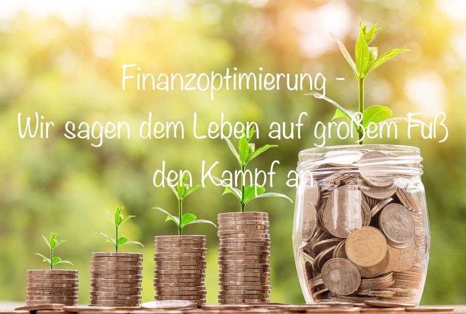 Finanzoptimierung Sparen Frugalismus Minimalismus