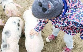 Nachhaltig und minimalistisch leben mit Kindern