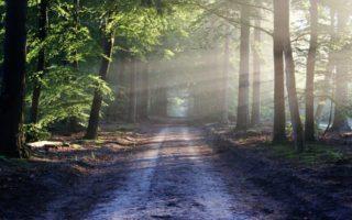 Minimalismus ruhiger leben