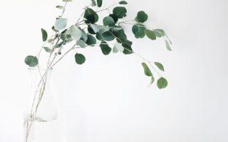 minimalismus nicht die loesung