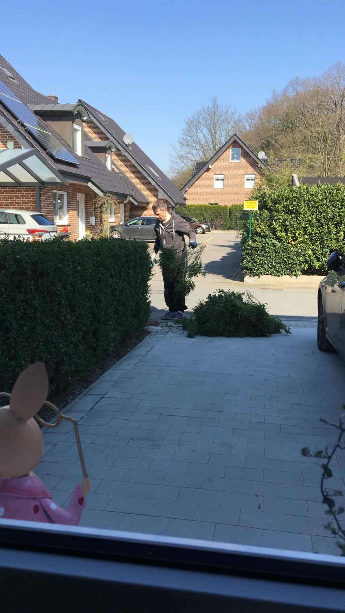 hecke entfernen vorgarten verschoenern scaled