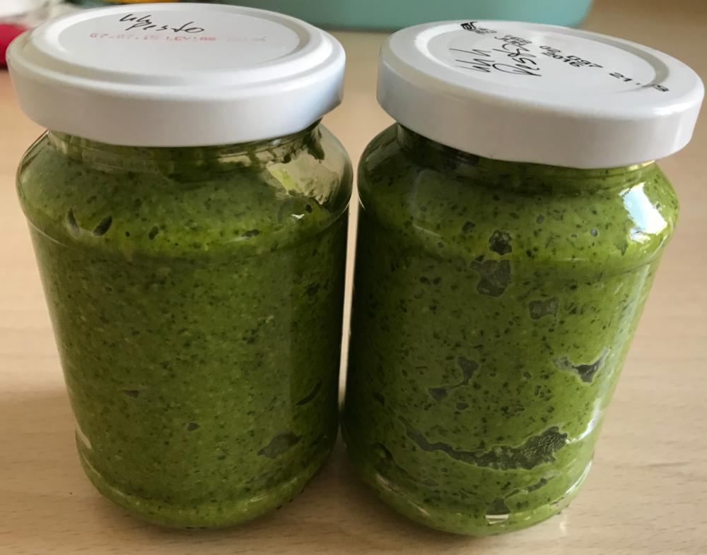 Gemuesegarten Kleingaertnern Blog Erfahrungen Tipps Urban Gardening Kapuzinerkresse Pesto