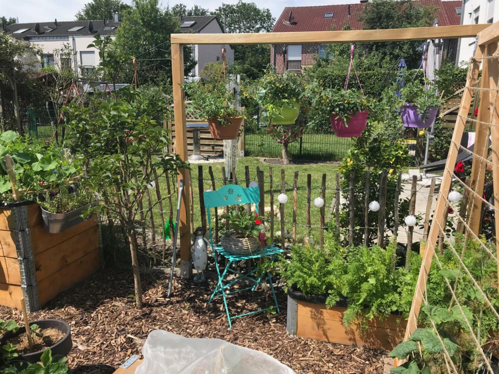 Gemuesegarten Kleingaertnern Blog Erfahrungen Tipps Urban Gardening bunte gruene Gaerten