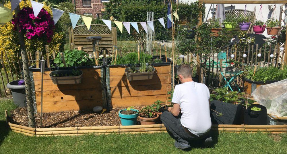 Kleingarten Gemuesegarten Tipps Ideen