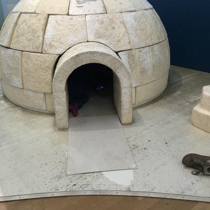 iglu museum koenig bonn kinder