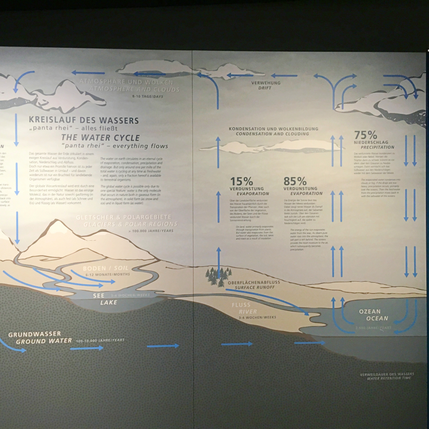 lebensraum wasser museum koenig
