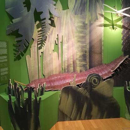museum koenig planet 3 0