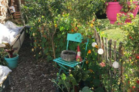 Kleingarten im September