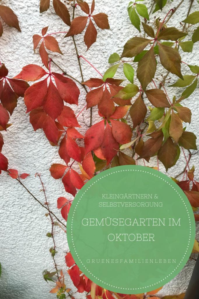 gemuesegarten oktober